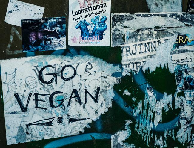 Cosméticos sin ingredientes de origen animal, Cosméticos Veganos